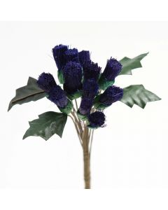 Purple Thistle – 144 Pack