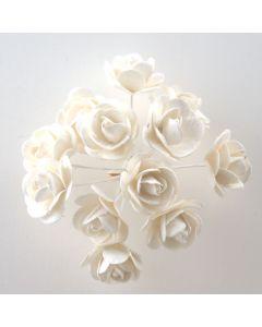 Off white paper tea rose – 144 Pack