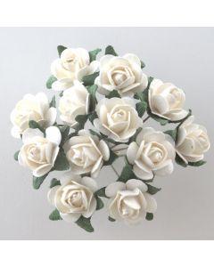 Off white/green paper tea rose – 144 Pack