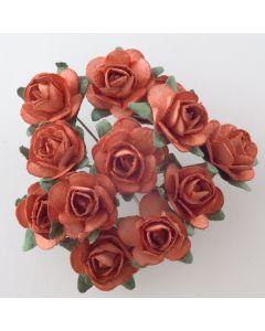 Terracotta paper tea rose – 144 Pack
