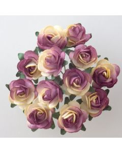 Cream/burgundy paper tea rose – 144 Pack
