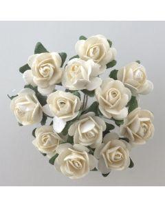 Cream paper tea rose – 144 Pack