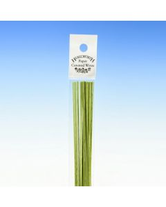 Hamilworth Nile Green Florist Stem Wires - 28 Gauge (Pack of 50)