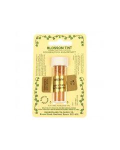 Sugarflair Blossom Tint Dust Cream (7ml)