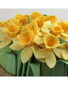 Katy Sue Mould - Daffodils
