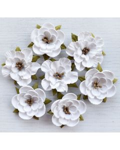 Paper Blossoms – White (7 Pack)