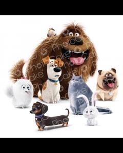 Secret Life of Pets - Metropolitan Pets - Image