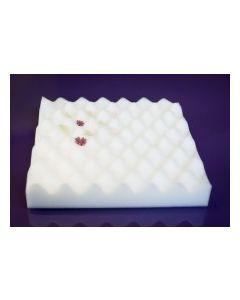 Flower Foam Drying Tray 28cm x 28cm