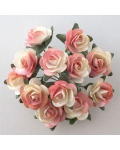 Peach paper tea rose – 144 Pack