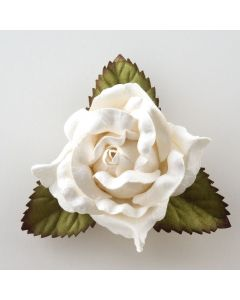 White large open rose – 12 Pack