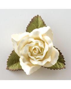 Cream large open rose – 12 Pack