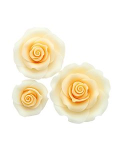 SugarSoft Roses - Mixed Pack -  Ombre Peach -12 Roses