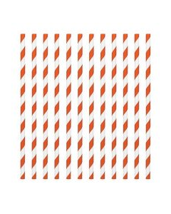 Orange Candy Stripe Paper Straws